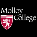 Molloy College — Vice President for Academic Affairs and Dean of Faculty